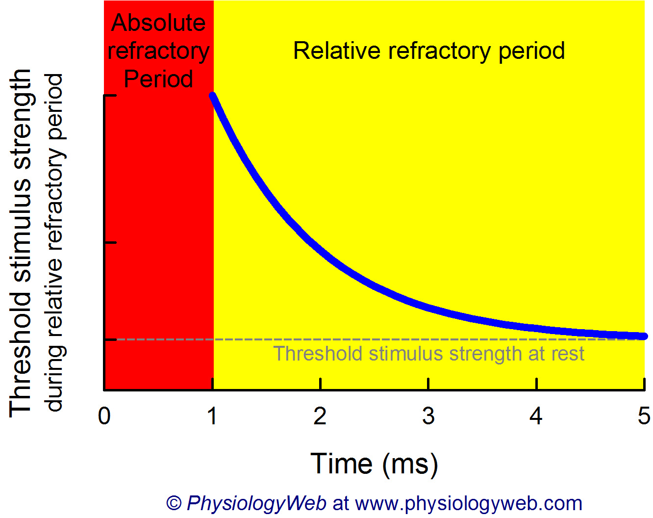 Threshold stimulus strength during the relative reftractory period