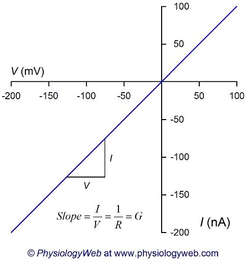 Current-voltage (I-V) relationship.