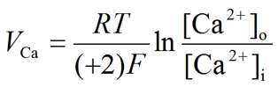Nernst equation: Calcium (Ca++) equilibrium potential