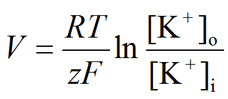 Nernst equation for potassium