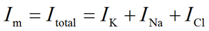 Total membrane current equation (Im = IK + INa + ICl)